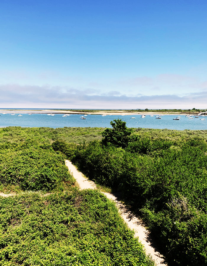 Chemin de plage en Normandie, producteurs normands