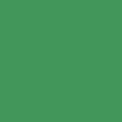 rond decor vert
